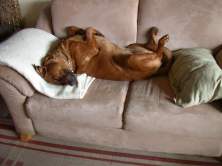 Emma entspannt sich - 2